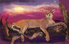 cougar-on-limb-4-print